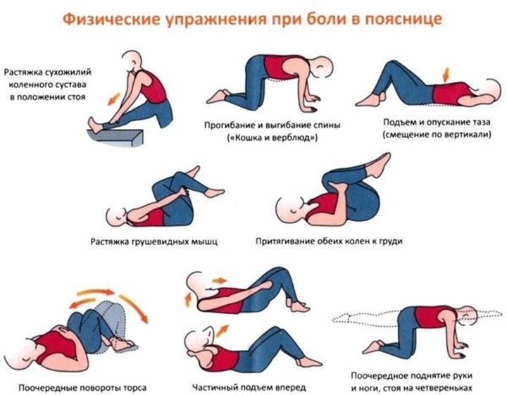 Гимнастика при болях в пояснице