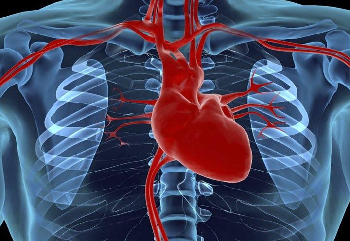Забота о здоровье сердца