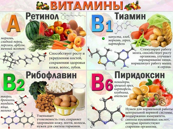 Какие витамины за что отвечают