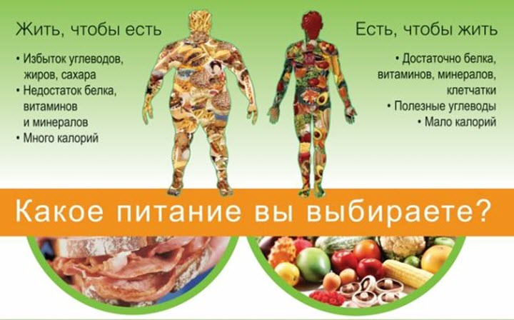Выбор питания