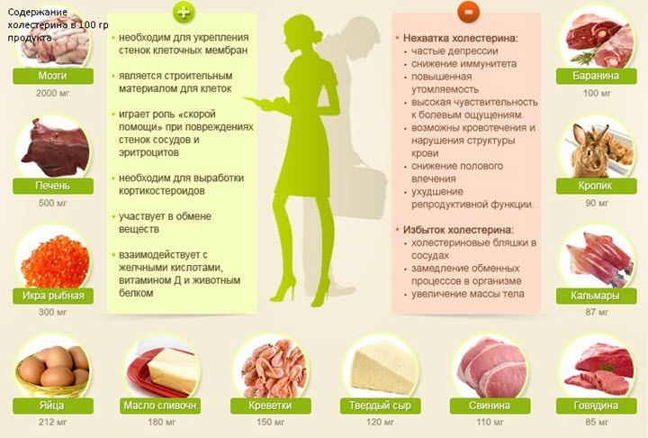 Польза и вред холестерина
