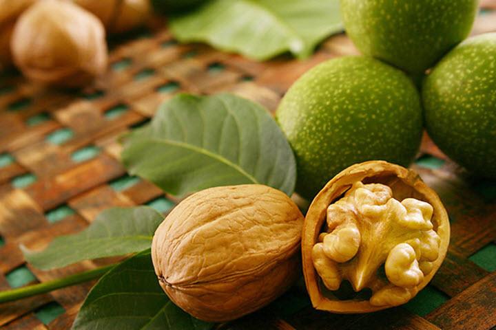 Плод ореха грецкого
