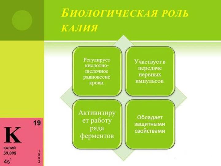 Роль калия в организме