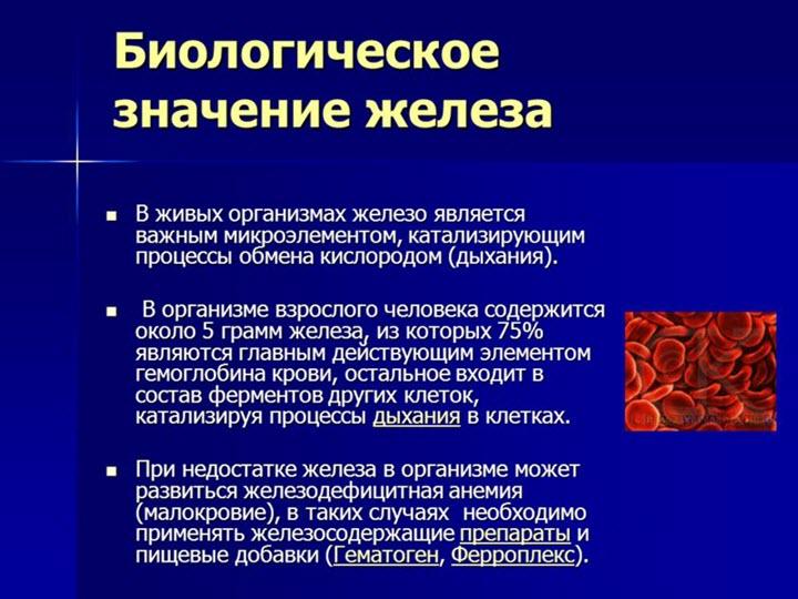 Значение железа в организме