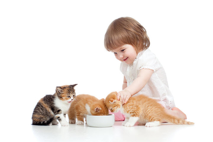 Тесное общение с животными как причина глистной инвазии