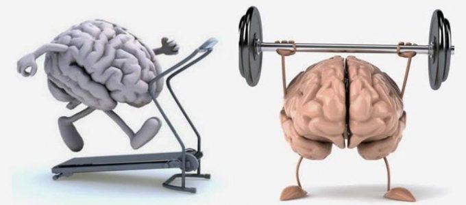 Здоровье сосудов мозга