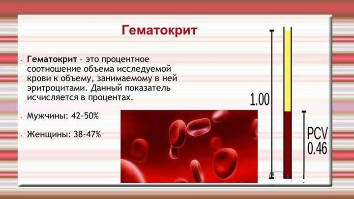 Что такое гаматокрит